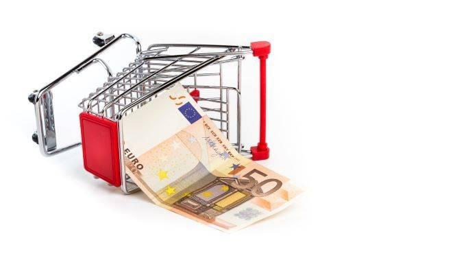shopping-cart-with-50-euro-bill-inside-PLNCQH3.jpg
